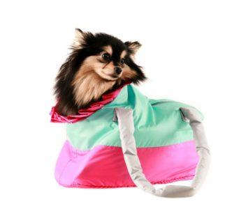 Сумка-переноска для собак